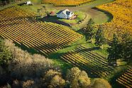 Oregon - Le Cadeau Vineyards