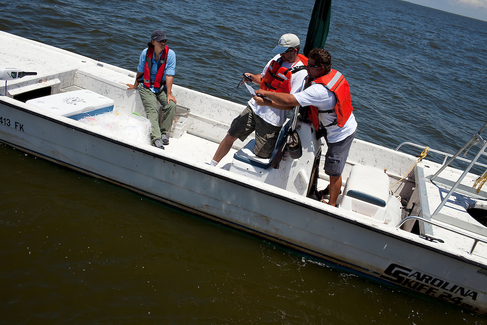 From left, Stacy Villanueva  of Entrix (a company contracted by British Petroleum), Howard Schnabolk of the National Oceanographic and Atmospheric Association (NOAA), and Capt. Paul Whipple, navigate the next area they will conduct experiments using a map and GPS near Venice, LA on June 25, 2010. The group is building evidence to assess the amount of damages done by the Deep Horizon British Petroleum oil spill which has been called the largest man-made natural disaster in American history. (Dominic Bracco II for The Wall Street Journal)