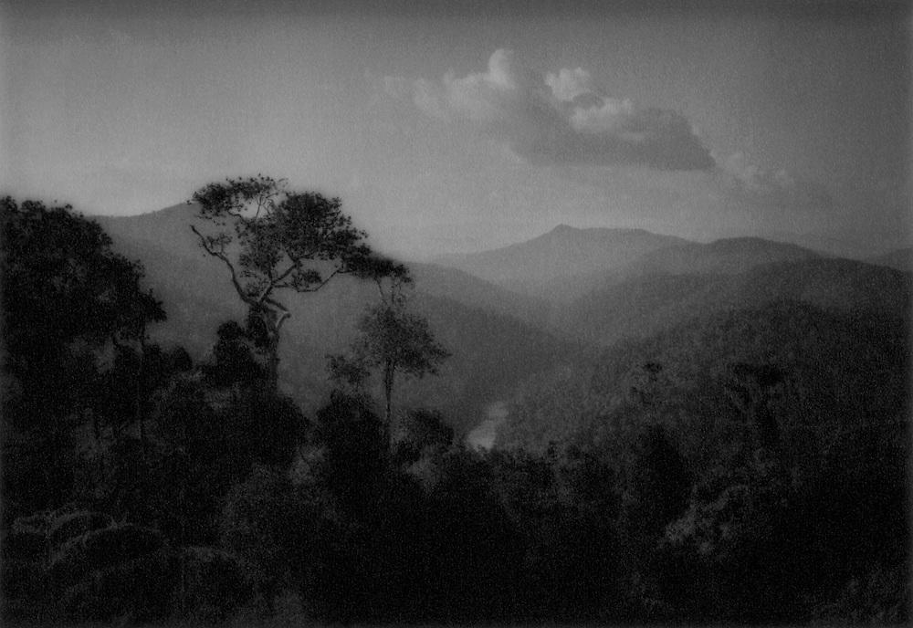 The Batek Negrito's ancestral land:  Rainforest as far as the eye can see, Taman Negara National Park, Malaysia.