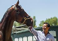 American Pharoah Returns Home Horse Racing