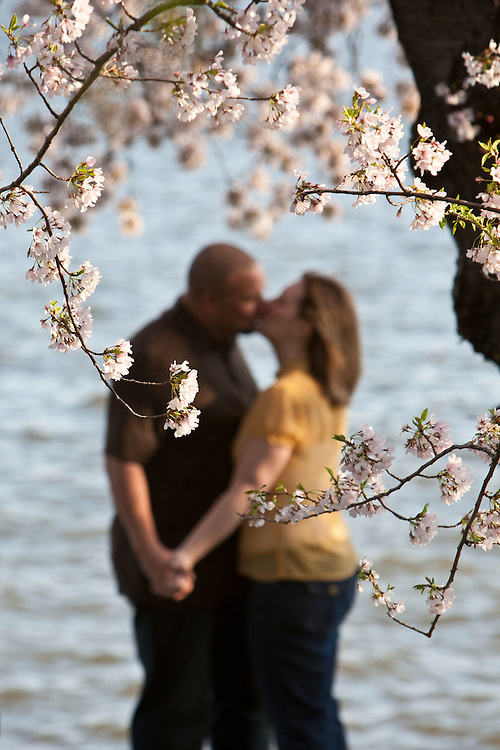 Two lovers kiss at the Tidal Basin during the Cherry Blossom Festival.