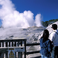 Prince of Wales Feather Geyser, Whakarewarewa Geothermal Area,  Rotorua, North Island, New Zealand