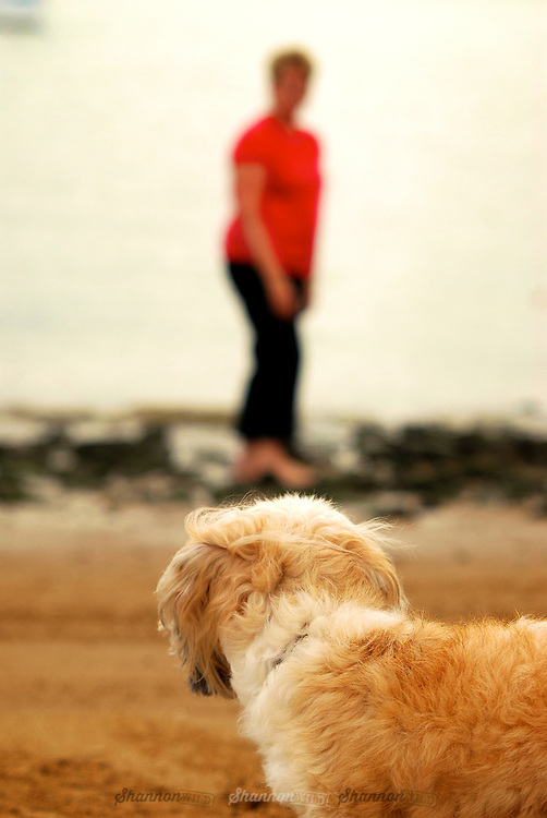 Bella's Walk at the Beach