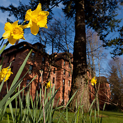 Spring flowers and Harstad hall at PLU on Thursday, March 17, 2011.
