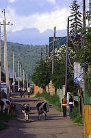 Gatene i Listvyanka, streets of Siberia,