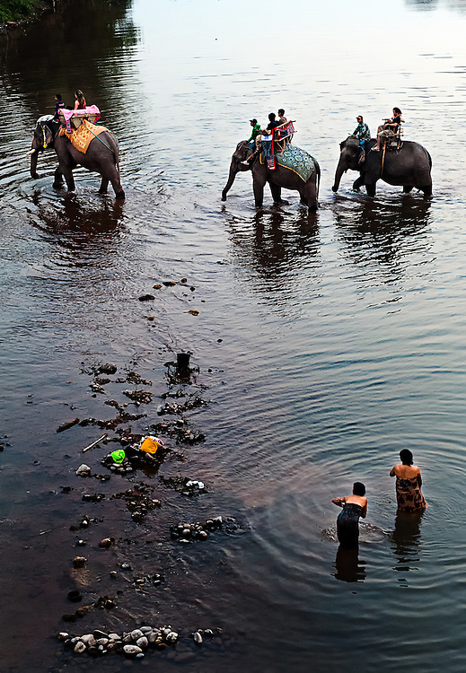 Elephants cross the river in Saiyabouli, Laos during the annual Elephant festival.