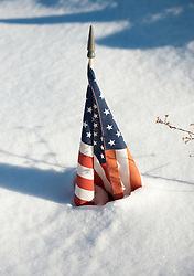 Small American flag surrounded by snow