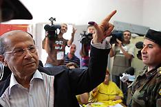 Lebanon: 2009 elections