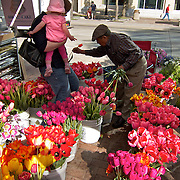 ..The Dane County Farmers Market is held Saturday mornings from early April through early November on the Capitol Square in Madison, Wisconsin.
