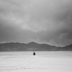 A lone evergreen trees in the middle of stark landscape at Bonneville salt flats backed with dark mountains and stormy sky.