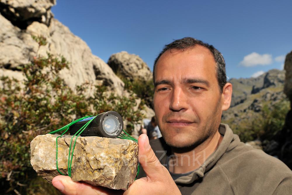Dr. Jaime Bosch checking the temperature datalogger in the pond. This pond is the habitat for the Majorcan midwife toad (Alytes muletensis) Torrent de s'Esmorcador, Majorca, Spain. |  | Dr. Jaime Bosch überprüft das Gerät, mit dem der Temperaturverlauf in dem Laichgewässer der Mallorca-Geburtshelferkröte (Alytes muletensis) aufgezeichnet wird. Während im Frühjahr das Wasser, beeinflusst durch den Zufluss aus einem kalten Gebirgsbach, noch sehr kühl ist, heizt es sich im mallorkinischen Sommer beträchtlich auf. Der Zufluss kann dabei durch Regenmangel völlig versiegen.
