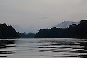 Misty dawn at Kinabatangan River, Sabah