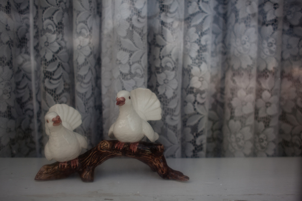 Two little ceramic birds are seen in the window of Kent and XXX Romney's home in Colonia Juarez, Mexico in July 2011. United States Presidential candidate Mitt Romney's family migrated to Mexico over 100 years ago after being granted asylum from Mexican President Porfirio Diaz after they had been pursued by the U.S. authorities for polygamy...(Romney is currently running for the Republican nomination.)