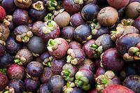 Purple Mangosteen fruit (Garcinia mangostana)