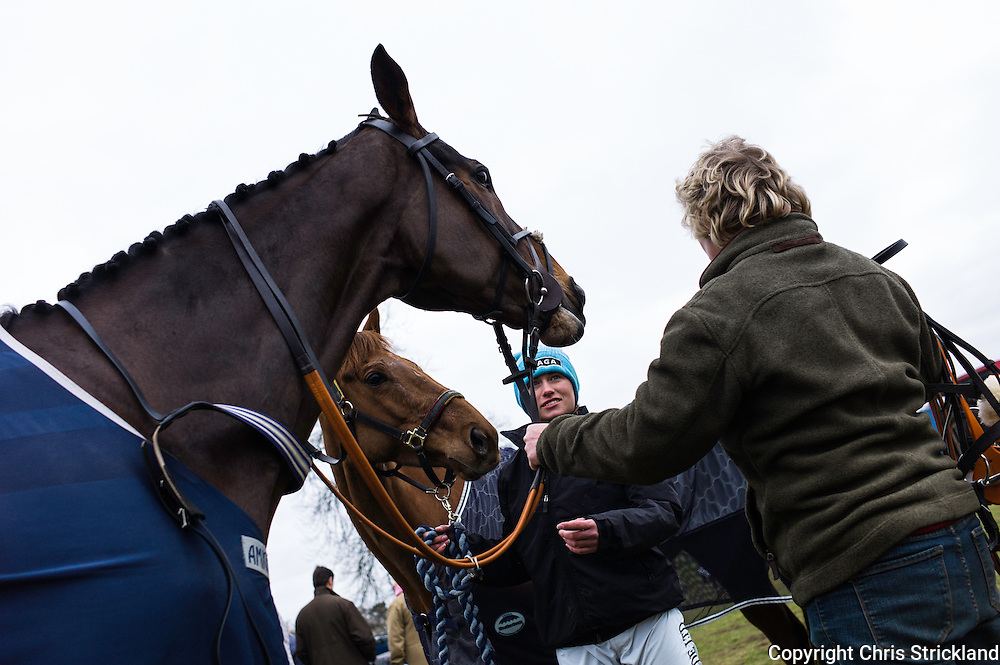 Jockey Joanna Walton with Durban Gold and Oscar Stanley at the Duke of Buccleuch Point to Point.