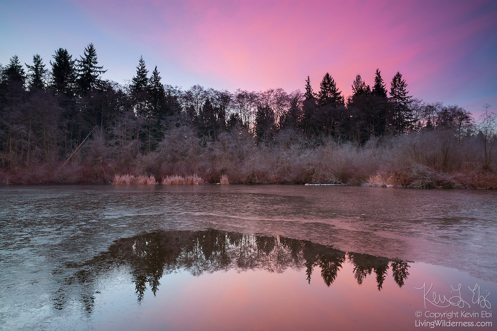 A colorful winter sunrise is reflected in the thawed portion of Scriber Lake in Lynnwood, Washington.