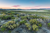 The Killpecker Dunes after sunset in the Red Desert of Wyoming