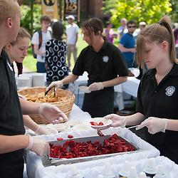 Berry Festival - Strawberries