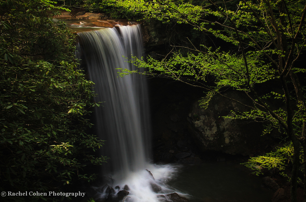 &quot;Dreamy Cucumber Falls&quot;<br /> <br /> Enjoy a dreamy scenic waterfall in the forest!!<br /> <br /> Waterfalls by Rachel Cohen