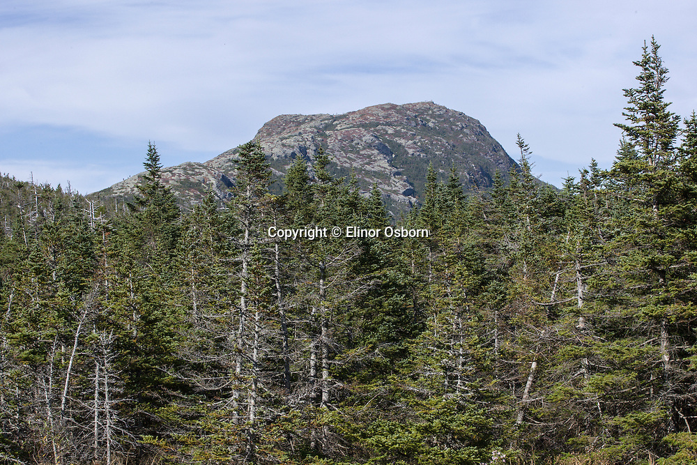 The Chin, Mt. Mansfield Natural Area, highest peak in VT