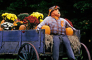 Scarecrow on a wagon near Stowe, Vermont, American Northeast