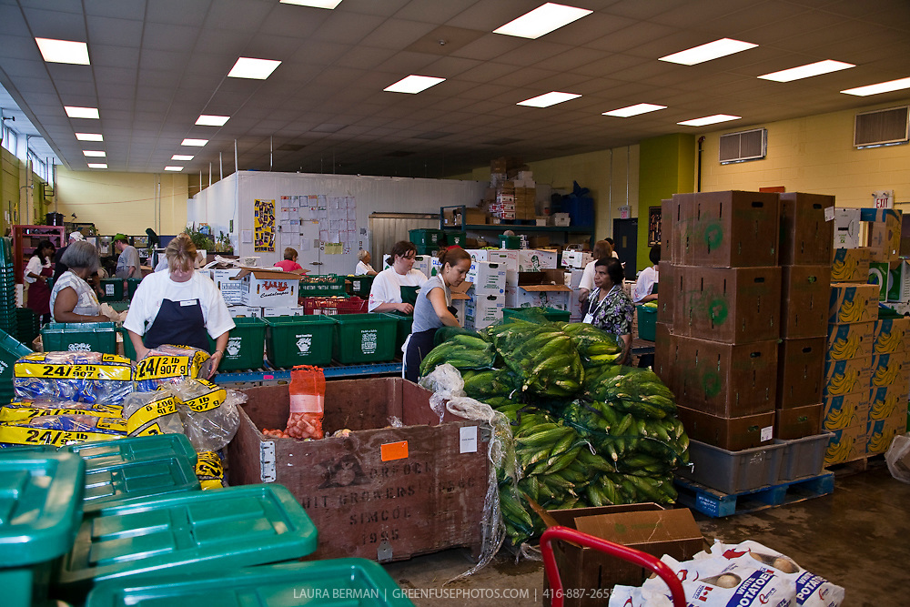 Packing day at FoodShare's Good Food Box