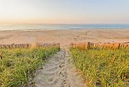 Beach, Sagaponack, Long Island, New York