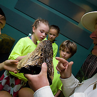 NAPLES, FL -- March 13, 2010 -- Hotel naturalist Randy Sarton, right, teaches Bethany Latham, 9, left to right, Abby Hedrick, 6, Jacqueline Haversat, 9, and Nate Hedrick, 5, about alligators during the Nature's Wonders program at The Ritz-Carlton in Naples, Fla., on Saturday, March 13, 2010.  The three hour programs let kids experience a more involved, educational nature program while parents get free time to enjoy themselves sans kids.