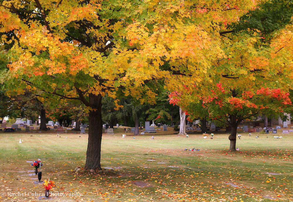 &quot;Colors Above&quot; <br /> <br /> Beautiful autumn colors above a peaceful resting place!