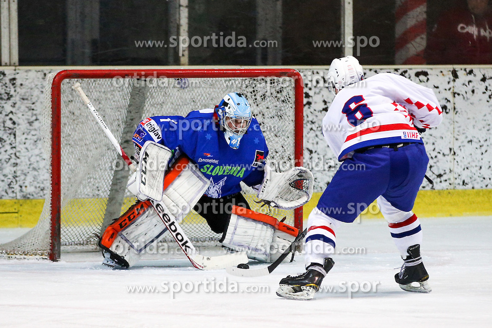 Mislav Blagus of Croatia vs Andrej Hocevar of Slovenia during friendly ice hockey match between Slovenia and Croatia, on April 12, 2016 in Ledena dvorana, Bled, Slovenia. Photo By Matic Klansek Velej / Sportida