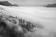 Vietnam Images-landscape-nature-Sapa