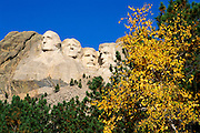 Mount Rushmore and fall color, Mount Rushmore National Memorial, South Dakota