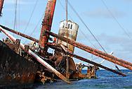 Polisini Greek Wreck  (Kinsei Maru), Silver Banks Marine Sanctuary, Dominican Republic, Caribbean Sea