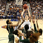 College Basketball. American Athletic Conference Women's Basketball Championships 2015