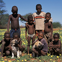 Children with dogs. This is the future of cheetah conservation in Namibia. Livestock Guarding Dogs are making a significant difference in reducing losses to predator, most farmers report no losses after obtaining an Anatolian Shepherd. If people can raise livestock and not have loss to cheetahs, then the species has a good chance for survival..