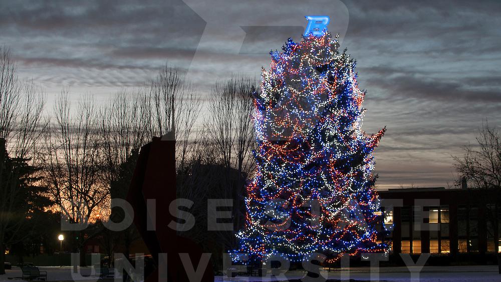 Christmas Tree Lightning, Photo By Wankun Sirichotiyakul
