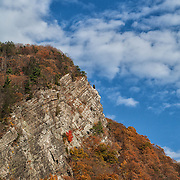 A red tree stands out on a cliff during autumn in the Delaware Water Gap National Recreation Area