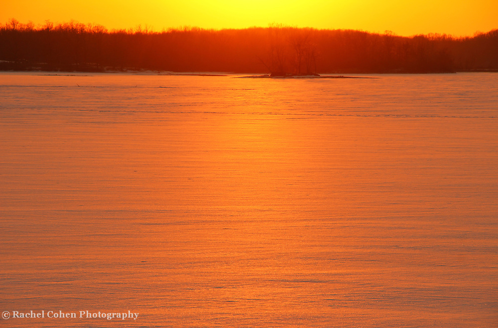 &quot;Kissed by the Sun&quot;<br /> <br /> Just as the sun begins to set, it casts its warm glow over trees in silhouette, and beautiful winter snow. A landscape kissed by the sun!!<br /> <br /> Sunset Images by Rachel Cohen