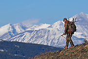 muledeer hunter in camo gun antlers snow covered rocky mountains