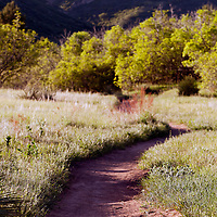 A bike and walking trail in the South Valley Park Ken-Caryl Ranch Open Space in Colorado at dawn.