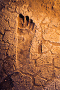 Pleistocene human footprints: Willandra Lakes in southeastern Australia..A close up view of one foot print from a series of prints that have been preserved from what Steve Webb believe's to be a small wetland surface that has been preserved from the height of the last glacial period...