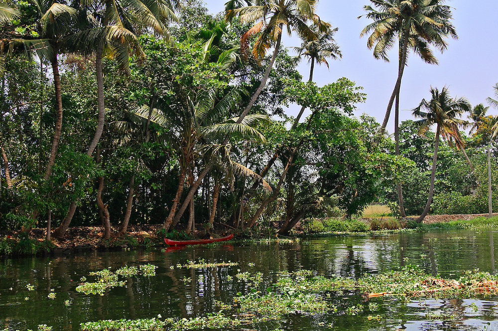 A red boat contrasts with the green vegetation of the Kerala Backwaters.