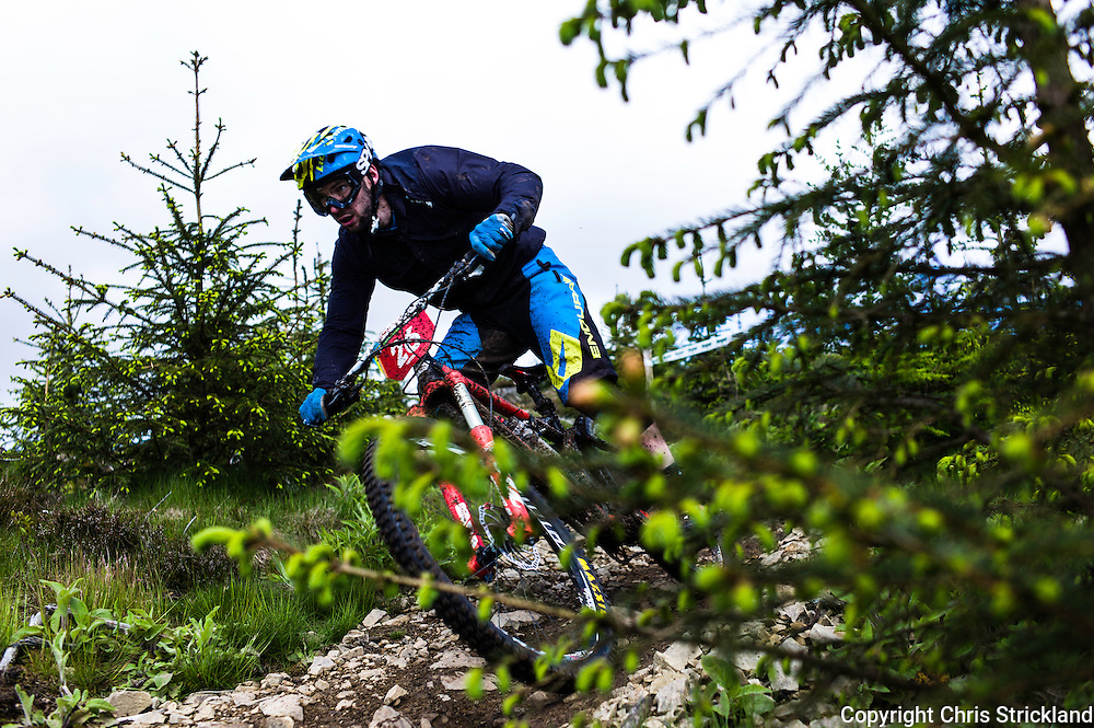 Glentress, Peebles, Scotland, UK. 31st May 2015. Joseph Nation at The Enduro World Series Round 3 taking place on the iconic 7Stanes trails during Tweedlove Festival. Mountain bikers come up against eight stages across two days, with an intense 2,695 metres of climbing over 93km. As well as the physicality of the liaisons, the stages themselves are technical, catching many off guard.