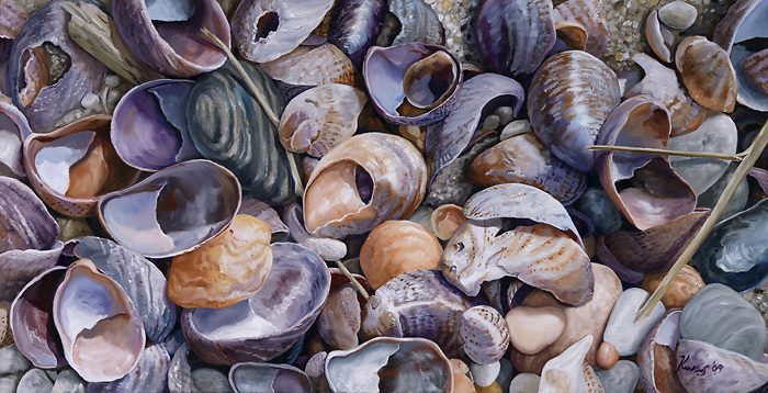 Violet slipper shells contrast with yellow and orange jingle shells, coming together in a painting that harmonizes and energizes. <br /> <br /> Original sold; Print Pricing, see Flight B.