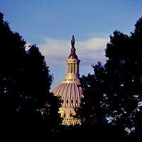U.S. Capitol seen through trees. Undated.