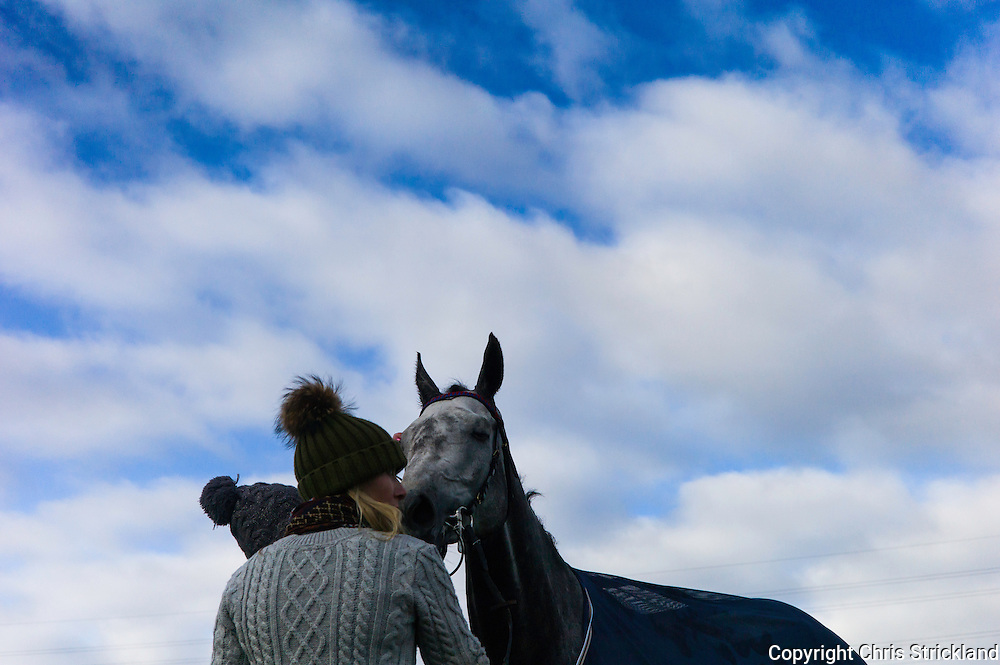 Corbridge, Northumberland, England, UK. 28th February 2016.  Racehorse Viocometti enjoys a drink after racing at the Tynedale Hunt annual Point to Point horse racing fixture.