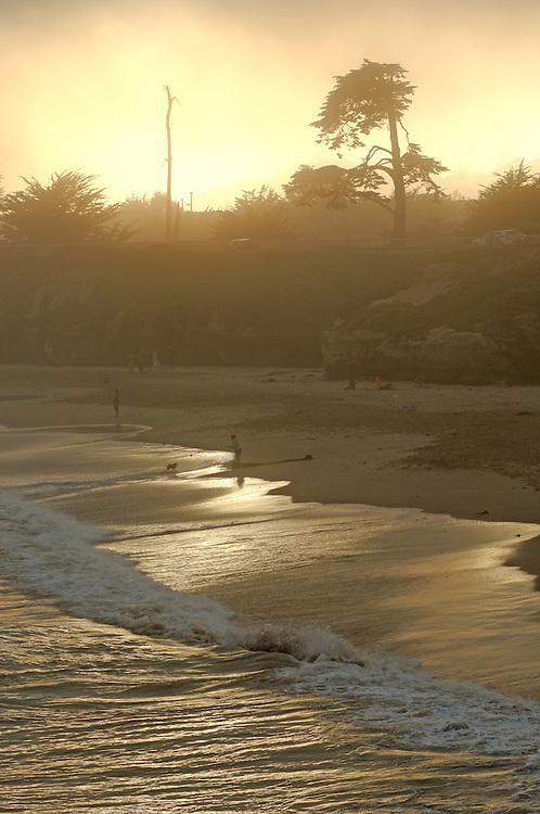 beach at Sunset, Lighthouse Field State Park, Santa Cruz, California, United States of America