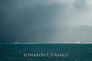 Rainstorm Envelops the Northern Edge of New Zealand's South Island. A Waterspout Forms in the Distance. Series: Horizons