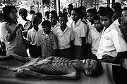 School groups visit the hospital to gain some insight into AIDS. A number of deceased patients are put on display at 'THE LIFE MUSEUM' to help educate visitors to the hospice -Wat Prah Bat Nam Phu hospice, Lop Buri.  September 2003.©David Dare Parker / AsiaWorks Photography
