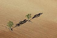 Monegros desert area.